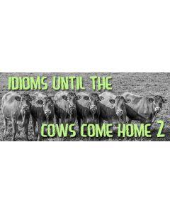 idioms 2.jpg