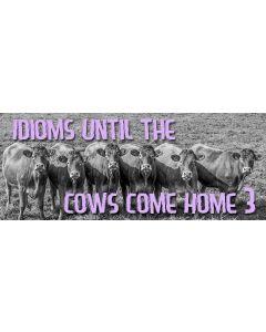 idioms 3.jpg