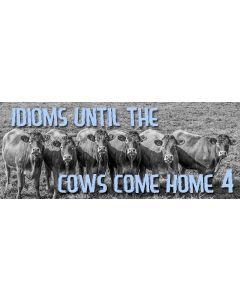 idioms 4.jpg