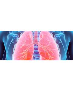 respiratory .jpeg
